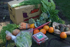 First CSA delivery!