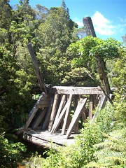 Logging dam, Pinnacles hike (- MattW -) Tags: new travelling dam logging zealand backpacking northisland kiwi kauri coromandel pinnacles