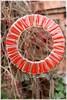 Giant Lollipop ! (Jean-christophe 94) Tags: orange art garden jardin ring lollipop sucette jc94 jeanchristophe94