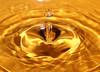 A Drop of Gold / Egy csepp arany (butacska) Tags: macro reflection nature water closeup droplets drops waterdrop sony drop artists droplet liquid highspeed makró tükröződés csepp vízcsepp víz sonyalpha közelkép