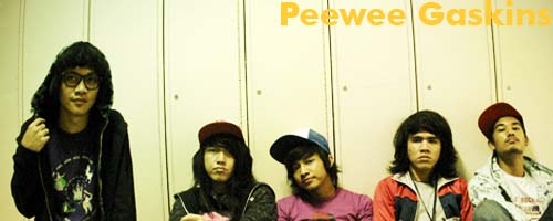 001_peeweegaskins