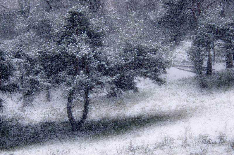 nins-163