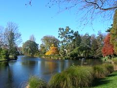 DSCN2151 (gslkuek) Tags: autumn newzealand christchurch monavale