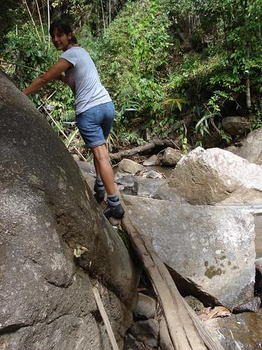 entre rocas y canyas de bambu