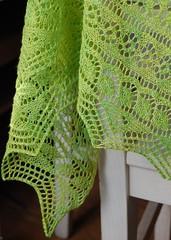 Border II (casa esmerelda) Tags: joy knit handknit cecilia shawl gardenparty slog poshyarn