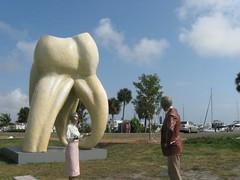 Sarasota tooth statue