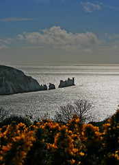 The Needles Lighthouse from Headon Warrren (s0ulsurfing) Tags: ocean blue light sea sky cliff cloud sunlight lighthouse seascape blur tree tourism nature water silhouette clouds island bay coast focus holidays skies dof natural bright bokeh pov sightseeing perspective shoreline silhouettes tourist cliffs pointofview evergreen coastal shore vectis isleofwight solent coastline shrub needles 2008 isle shrubs channel sights englishchannel wight attraction shimmering foreground shimmer heathland gorse theneedles alum lamanche westwight alumbay furze whin ulex headon warrren s0ulsurfing visitorattraction furse commongorse coastuk headonwarrren isleofwightattractions isleofwightattraction
