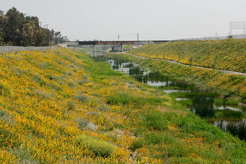 Dominguez Gap Wetlands