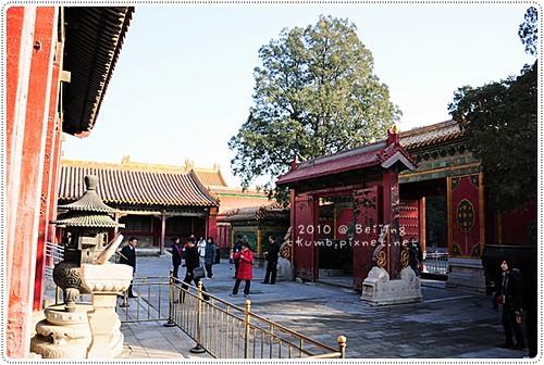 北京故宮 (42).JPG