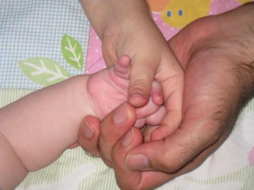 Boy hands