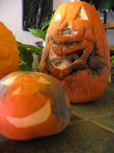 Zombie Pumpkins Unite!