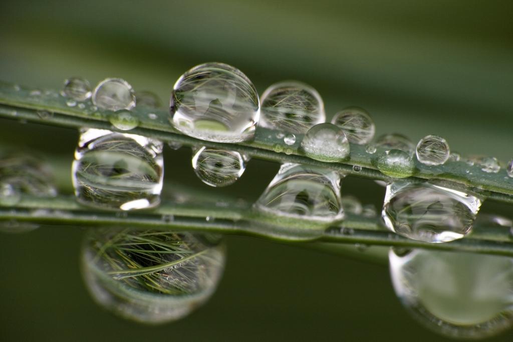 waterdrops-7