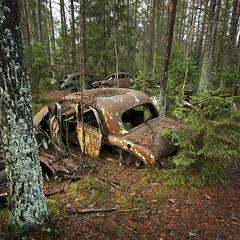 kes Bilskrot, bil06 (andrewaaa5) Tags: cars abandoned car forest moss decay lichen scrapyard trashed scrapmetal scap restoraton akesbilskrot