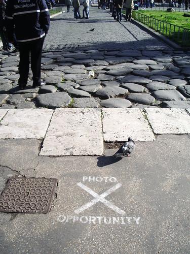 Photo Oportunity