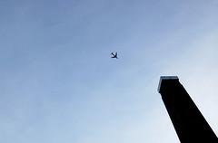 Tate, Plane (Paul Saxton) Tags: art plane spider gallery aeroplane millenniumbridge tatemodern turbinehall louisebourgeois banksidepowerstation