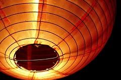 Macro lens is too fun! (tamara mann) Tags: friends montreal lantern 2008 yul 30d auvivre