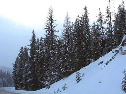Lolo Pass Montana