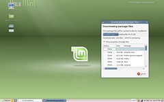 My Linux Mint