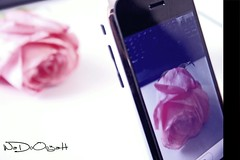 Use it carefully (Weda3eah*) Tags: flower love apple by keyboard it use someone carefully qatar iphone pinck rpse weda3eah articulateimages