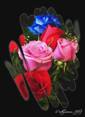 Le temps des Roses (Sylvie.Landry) Tags: macro nature fleur rose rouge perfect photographer bleu excellent awards soe couleur lilas the platinumphoto anawesomeshot ultimateshot ilovemypic theunforgettablepictures prettywomen1969 goldstaraward