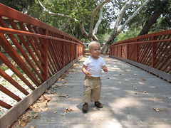 Walking (salt and chocolate) Tags: walking cancer rainer leukemia cutetoddler 20months