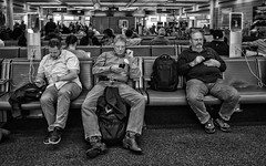 In Their Own Bubble (Anne Worner) Tags: anneworner blackandwhite ohare ricohgr airport bw backpack baggage beard boots candid charging communication cowboyboots glasses intheirownbubble iphone jeans listening manspreading mono music pluggedin seats shirt sitting splayed street streetphotography waiting