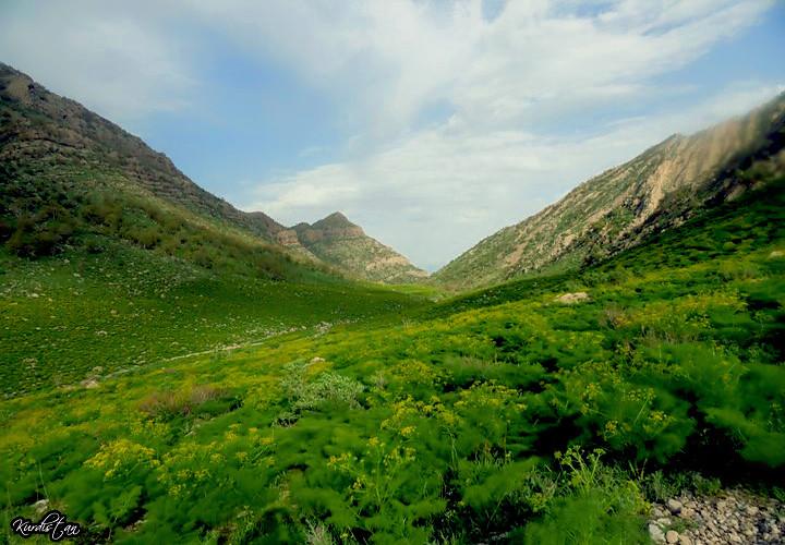 جمال الطبيعة كردستان العراق 5727463691_45f8839f1f_b.jpg