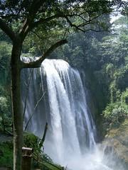 Pulhapanzak Falls on the Rio Lindo, Honduras (Fr. Mariusz Majewski) Tags: honduras falls waterfalls naturesfinest wodospad superbmasterpiece goldstaraward worldtrekker