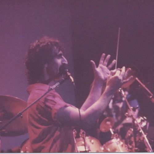 Zappa #5