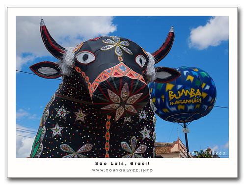 bumba-meu-boi (São Luís)