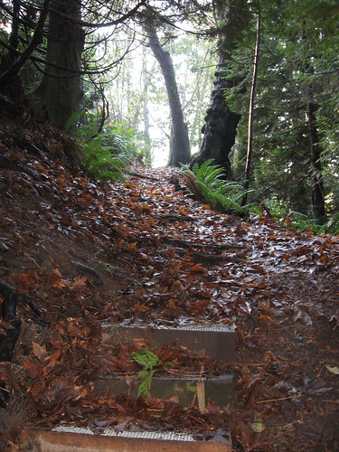 Gleneagles Hike