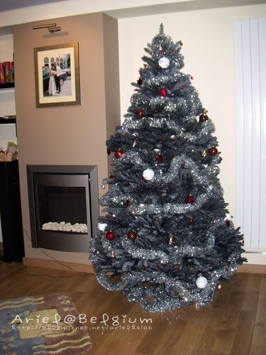 christmas tree 014