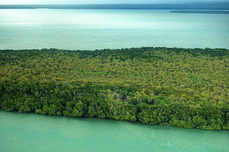 Saibai Island: Saibai Island Australia