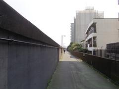 15白髭橋から青テント_02