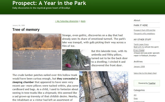 Prospect A Year in the Park