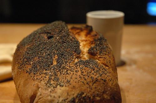 pane ai semi papavero