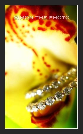 My last wedding in 2007 <br>- Cynthia and Jeffrey 8