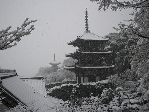 雪の当麻寺「双塔」