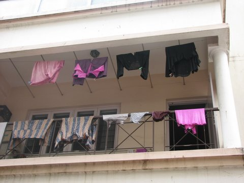 pink underclothing drying after holi 230308