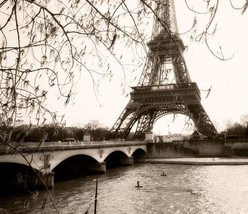 eiffel tower from the river