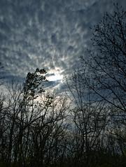 Montezuma NWR - Dusk (agladshtein) Tags: newyork outdoors wildlife cny fingerlakes cayuga senecafalls nikon18200mmvr nikond300 montezumanationalwildlifereserve
