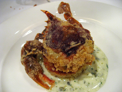 Really fantastic fresh soft shell crab, lightly battered and fried. One of the best examples Ive had in a long while.