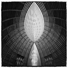 Just a Drop of Light (~ superboo ~ [busy busy]) Tags: light bw glass oakland christ cathedral interior pipes drop ceiling stained organ frame slats tear photographyisnotacrime silverefexpro securityguardquestioning
