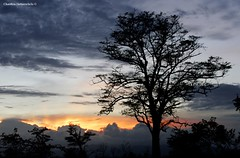 Sunset Behind the Clouds (charithra Hettiarachchi) Tags: sunset tree rain landscape srilanka udawalawa charithrahettiarachchi