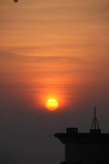 Sun-rise-2 (sanmang610) Tags: morning red sky orange sun india building bird nature vertical clouds sunrise landscape early fly flying asia ray shades shade rise silhoutte vizag