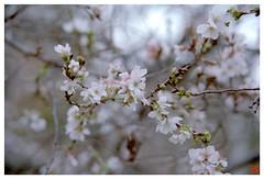 Today's Photo 071120 #03