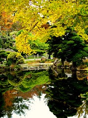 View #14 (AnotherSaru) Tags: sf autumn trees reflection tree fall water garden japanese tea japaneseteagarden saru 2007 anothersaru 100viewsofajapaneseteagarden