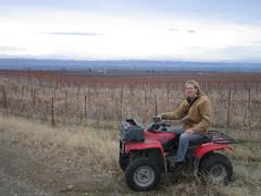 Winemaker 246