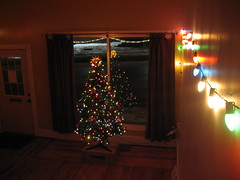 Our Xmas Tree!