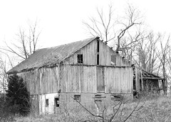 Going ... Going ...... (MEaves) Tags: old blackandwhite bw rotting barn rural illinois pentax weathered ruraldecay decayed relic aficionados blackwhitephotos abigfave k10d pentaxk10d onlythebestare